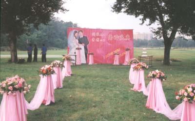 葫芦岛鹏达礼仪中心 - 葫芦岛开业庆典 - 葫芦岛婚礼庆典(婚庆)